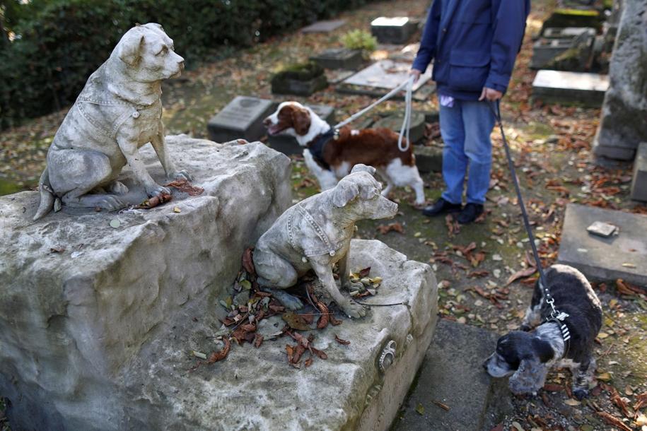 the-pet-cemetery-13