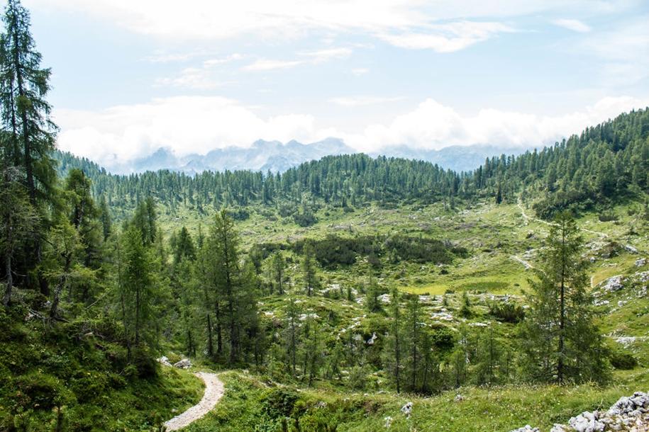 wonderful-three-weeks-in-the-alps-14