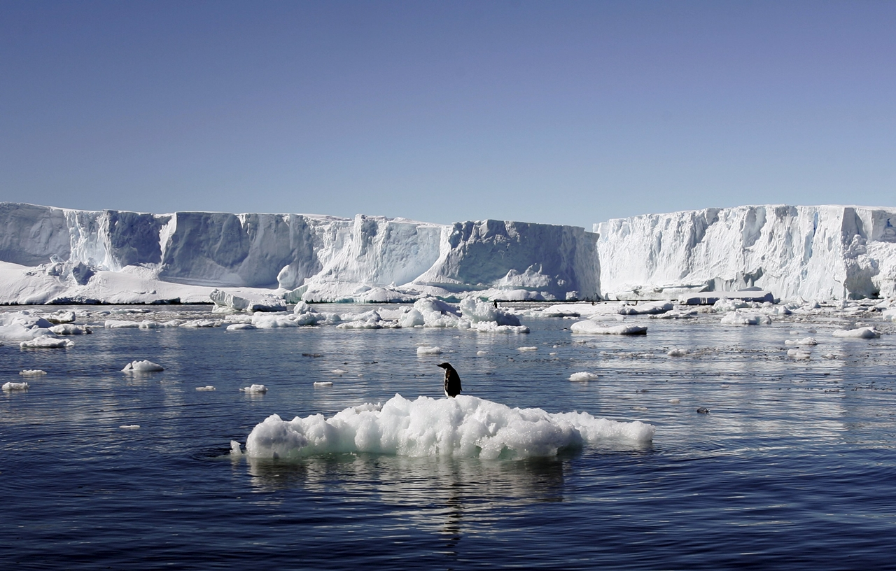 worlds-largest-marine-park-created-in-antarctic-ocean-03