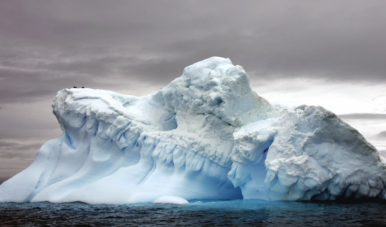 worlds-largest-marine-park-created-in-antarctic-ocean-07