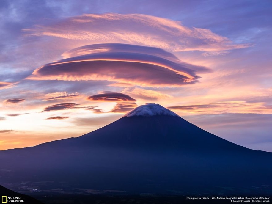 national-geographic-nature-photographer-of-the-year-2016_31