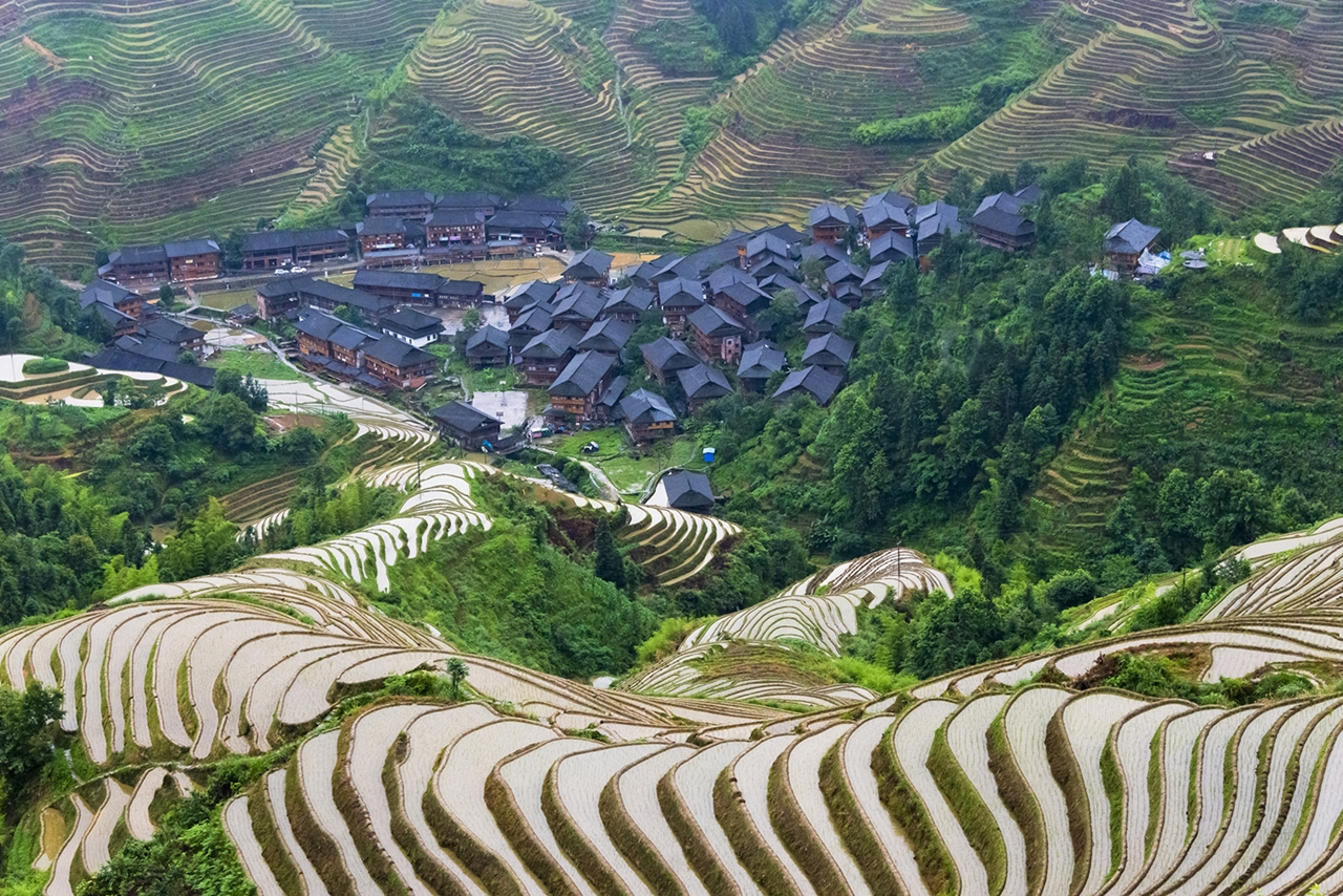 amazing-rice-terraces-05