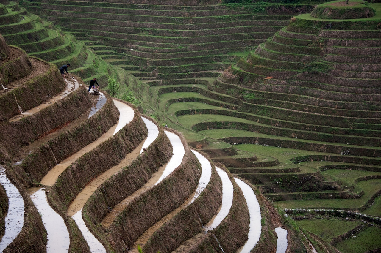 amazing-rice-terraces-14