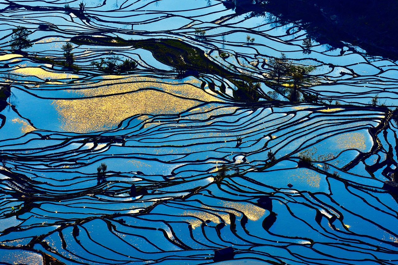 amazing-rice-terraces-16