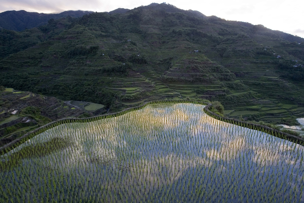 amazing-rice-terraces-18