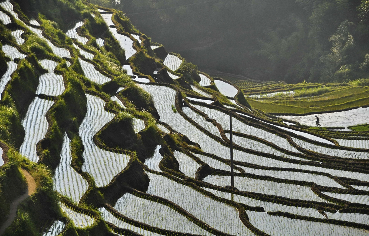 amazing-rice-terraces-20