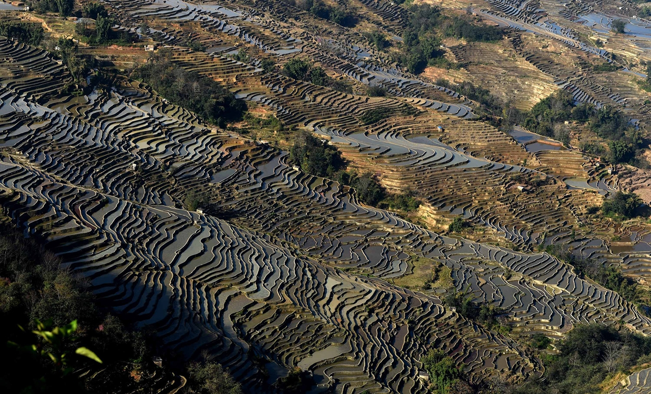 amazing-rice-terraces-21