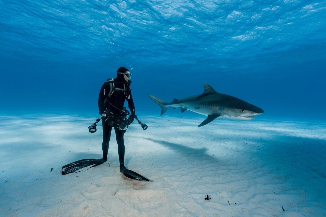 Лучшие фотографии 2016 года National Geographic