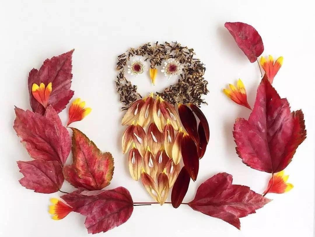 Изящные картины из цветов от флориста Бриджет Коллинз