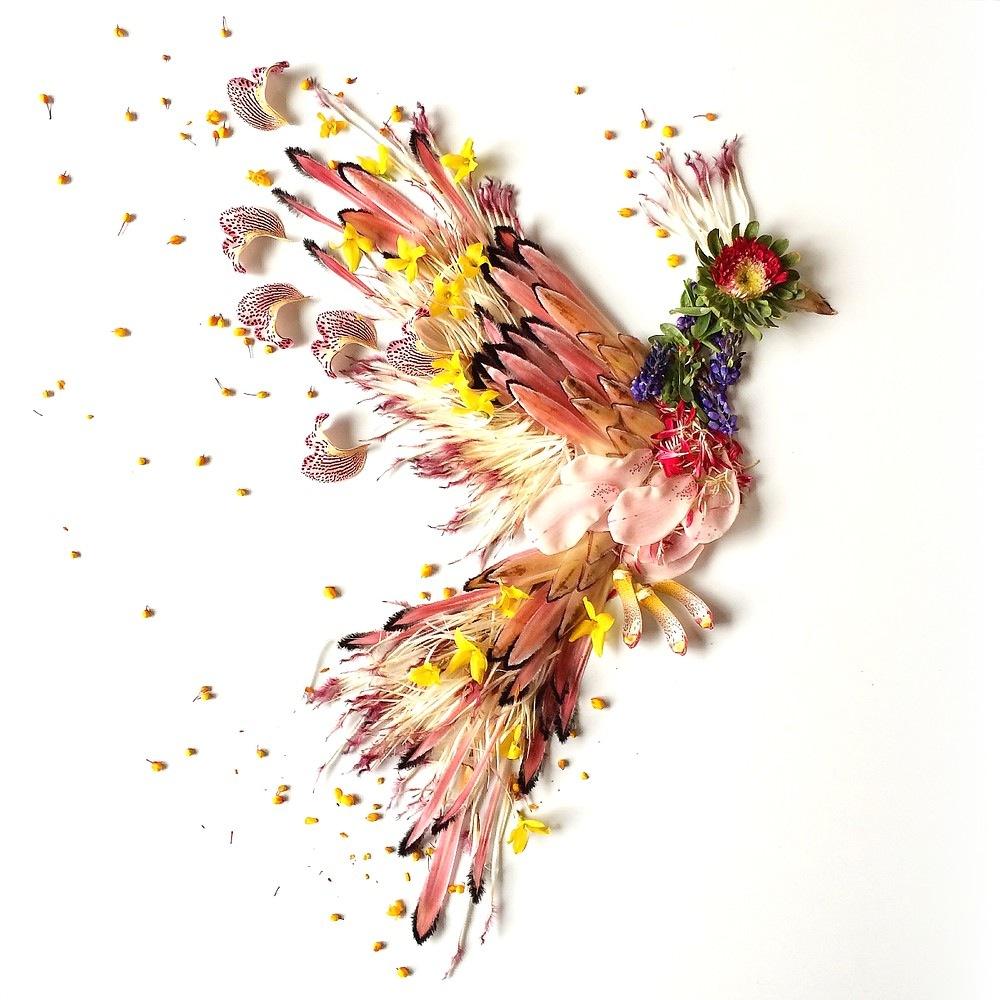 Розы своими руками птицы