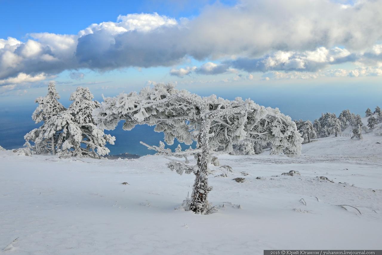 winter-has-come-04