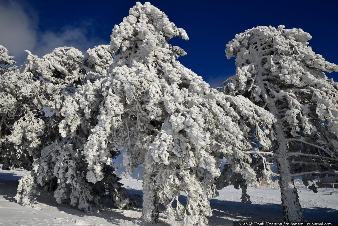 winter-has-come-05