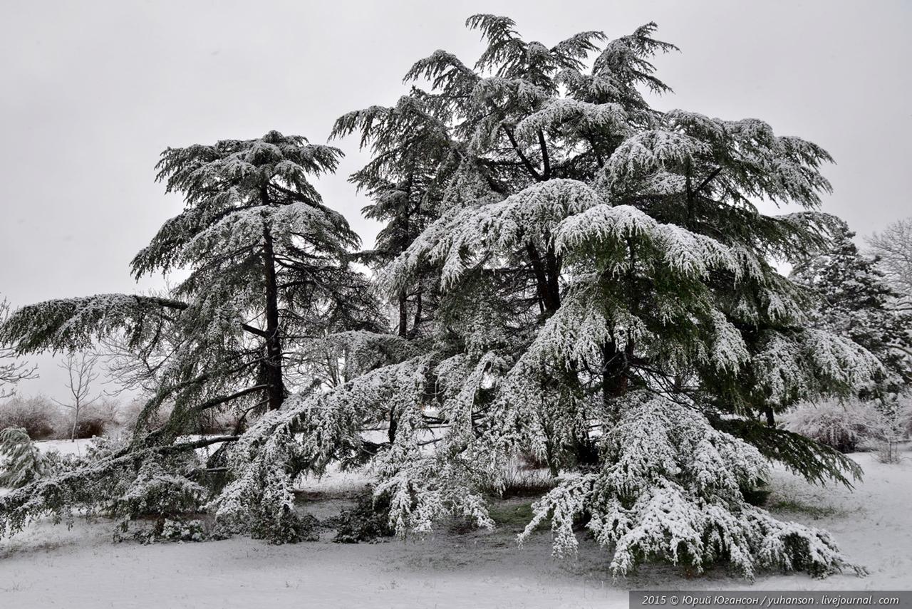 winter-has-come-08