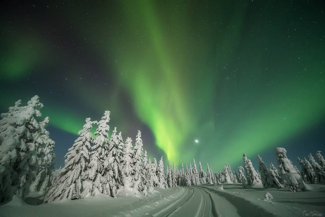 Зима в сказочной Лапландии