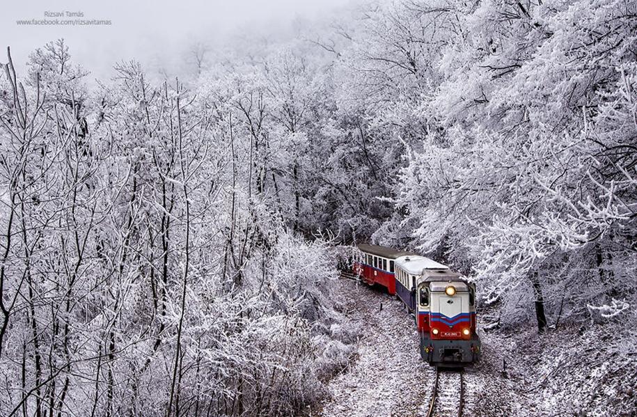 Сказочный лес в зимнем убранстве