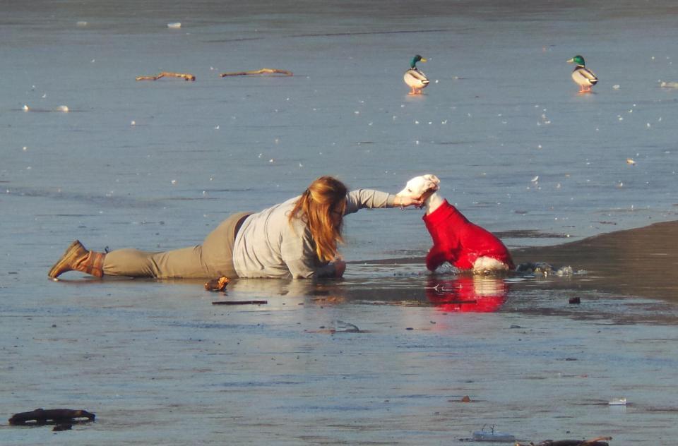 Отважная хозяйка спасла своего пёсика, провалившегося под лёд