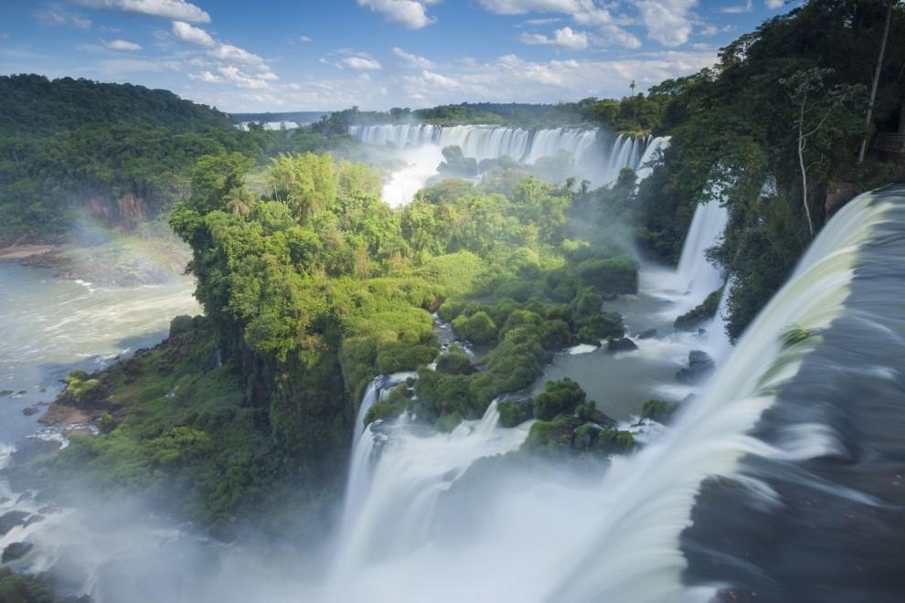 Международный день лесов: названы 15 красивейших лесов планеты