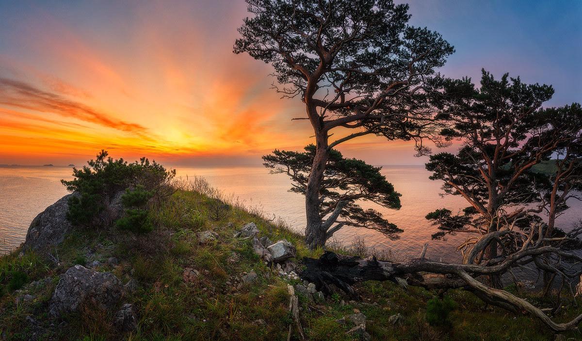 Природа Приморского края в фотографиях Алексея Сорокина