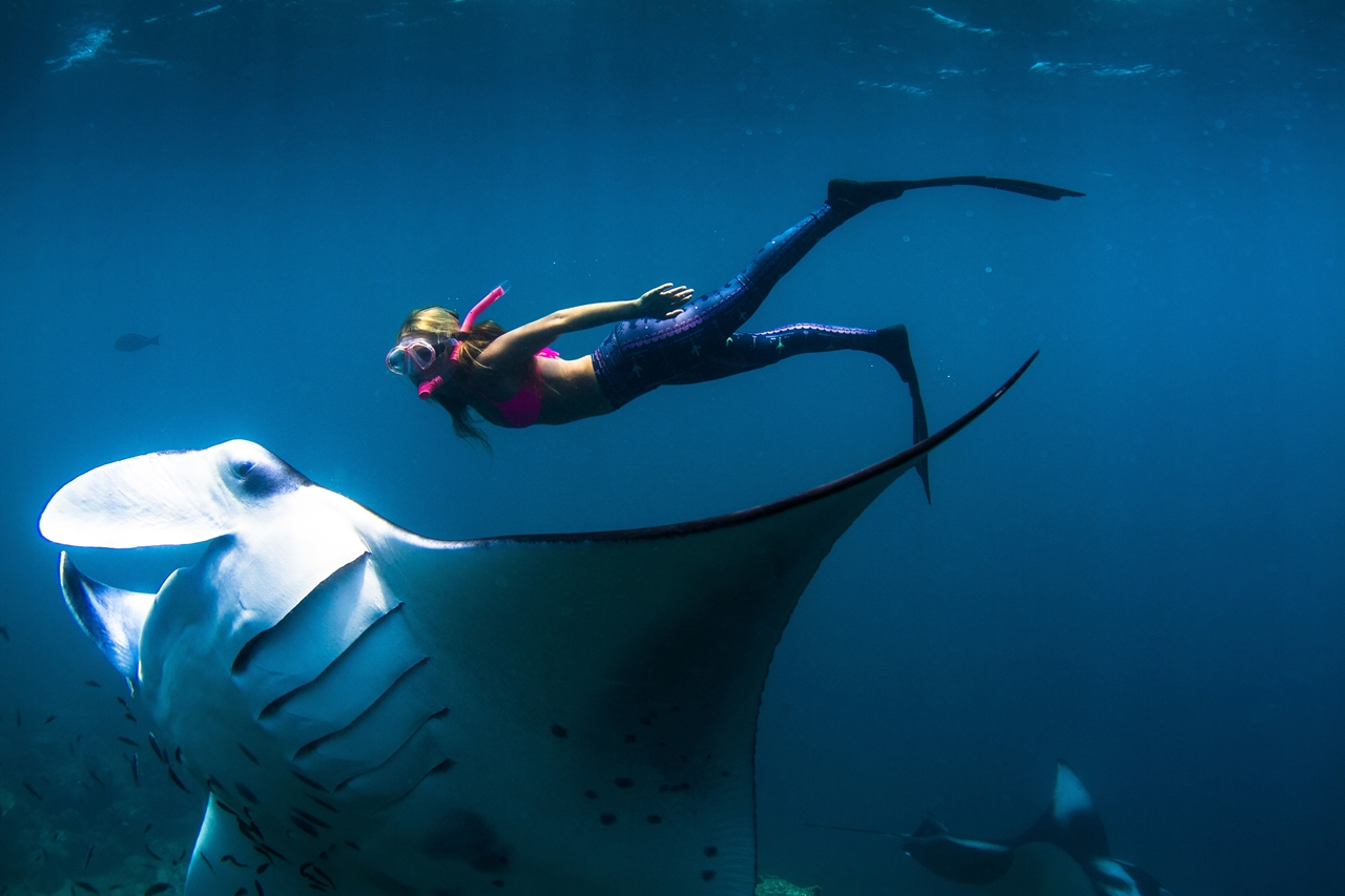 Подводная фотосессия с гигантским скатом