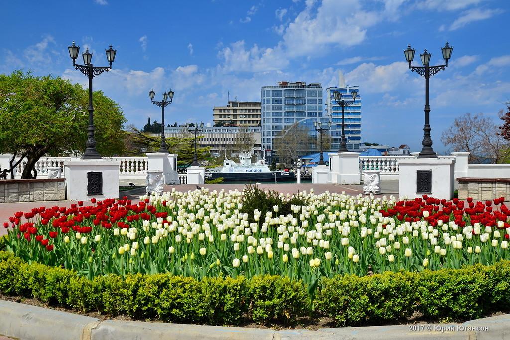 Севастополь утонувший в цветах