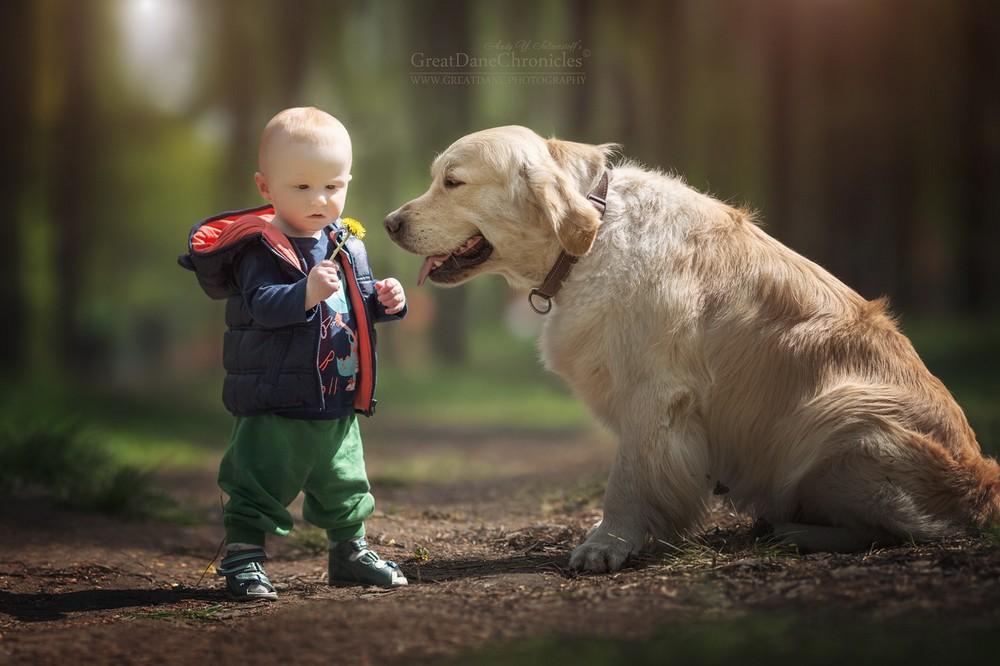 Очаровательные фотографии детишек с собаками