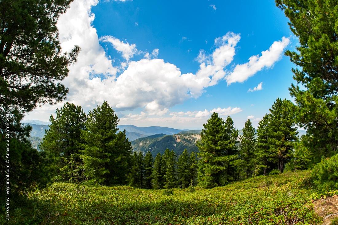 ТриЧЕ: Шир в горах Южного Прибайкалья