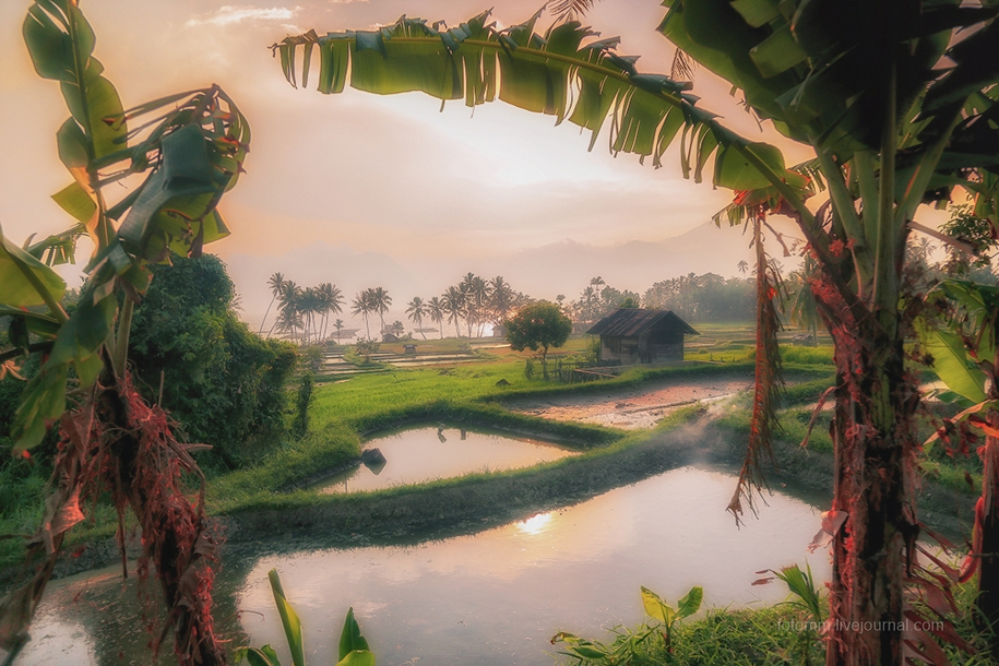 Индонезия. Рай на земле