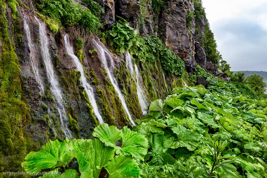 Лавовые поля на плато Янкито и стена водопадов в бухте Оля