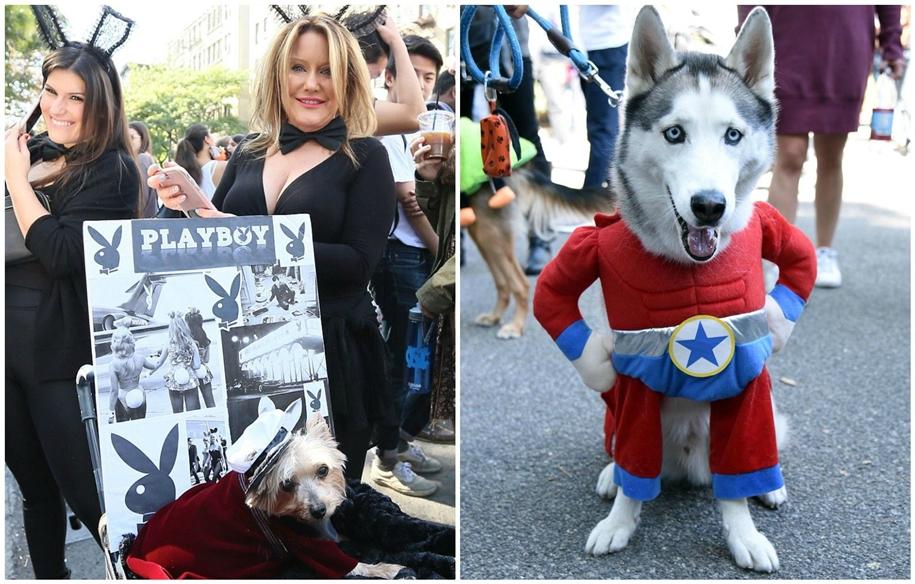 Ежегодный костюмированный парад собак в Нью-Йорке