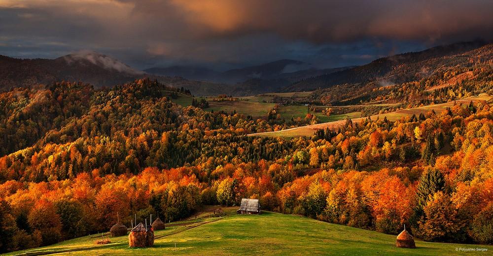 Осенние пейзажи Сергея Полюшко