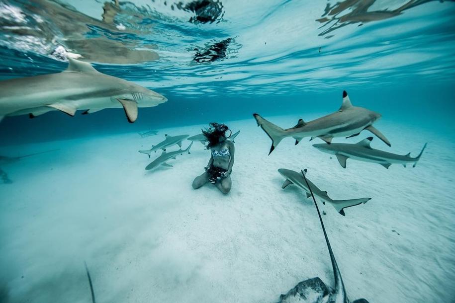 Девушка из Австралии с 12-ти лет плавает с акулами