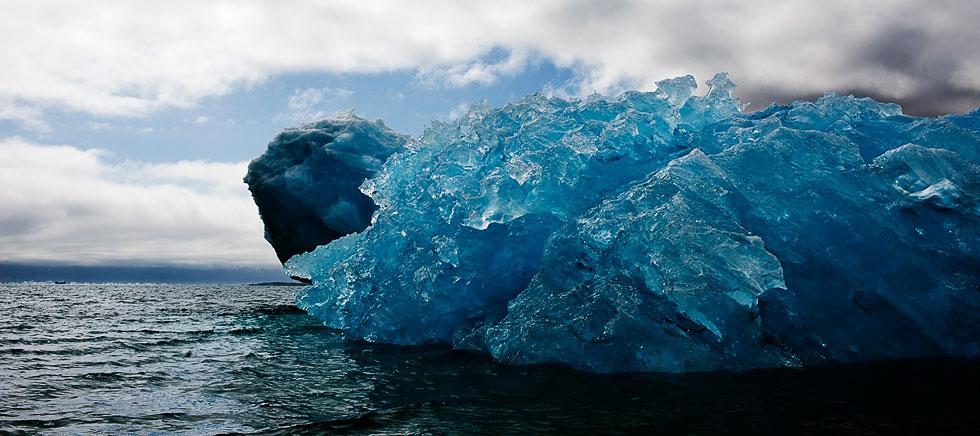 Монстры льда