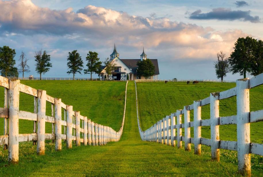 Кентукки — штат, где проходит знаменитое дерби