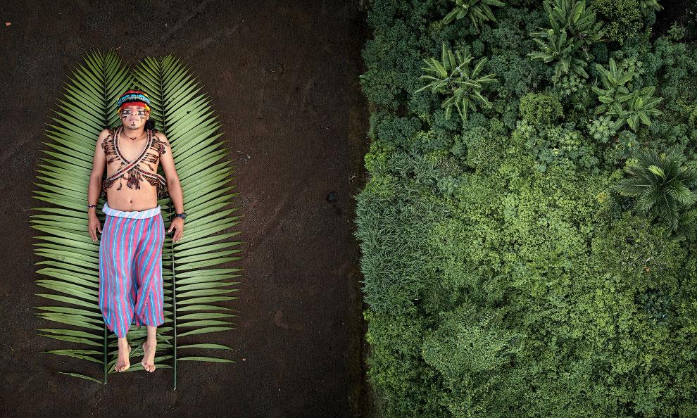 Победители Sony World Photography Awards 2020 среди профессионалов