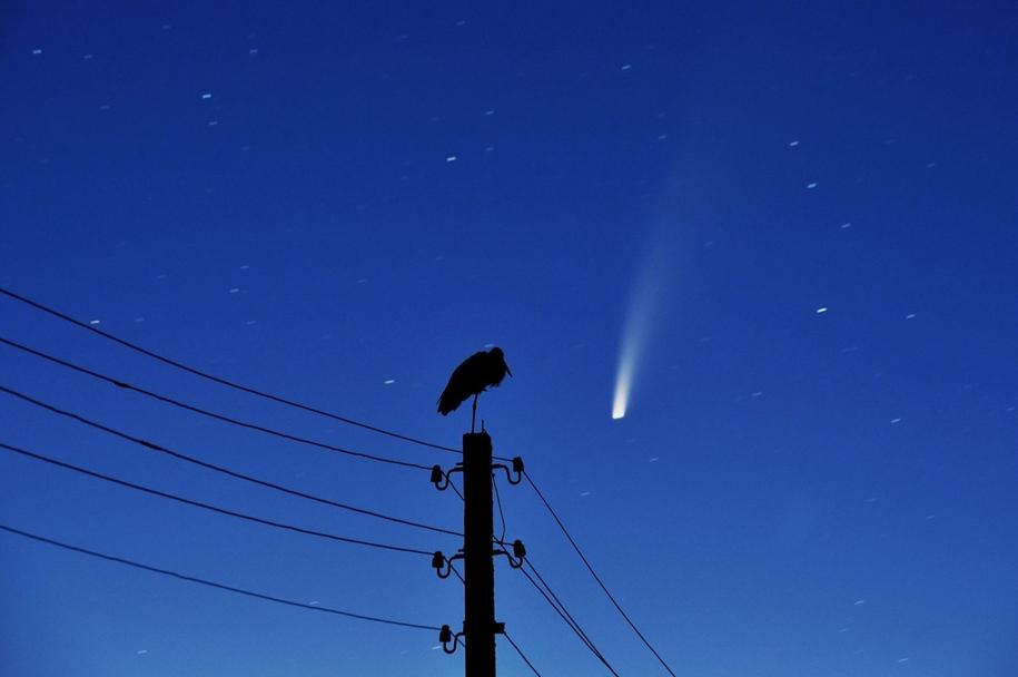 Комета Neowise пролетает вблизи Земли