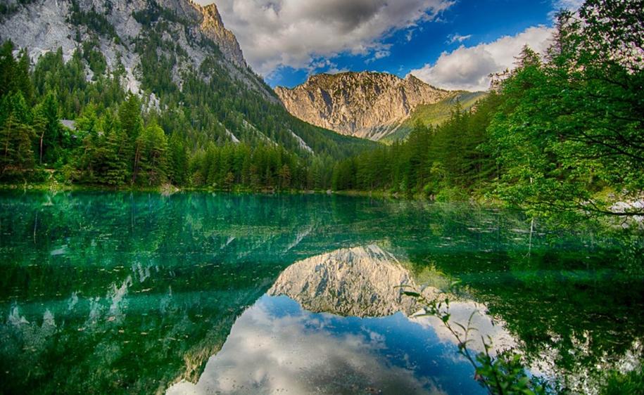 Грюнер-Зе: озеро с лесом под водой