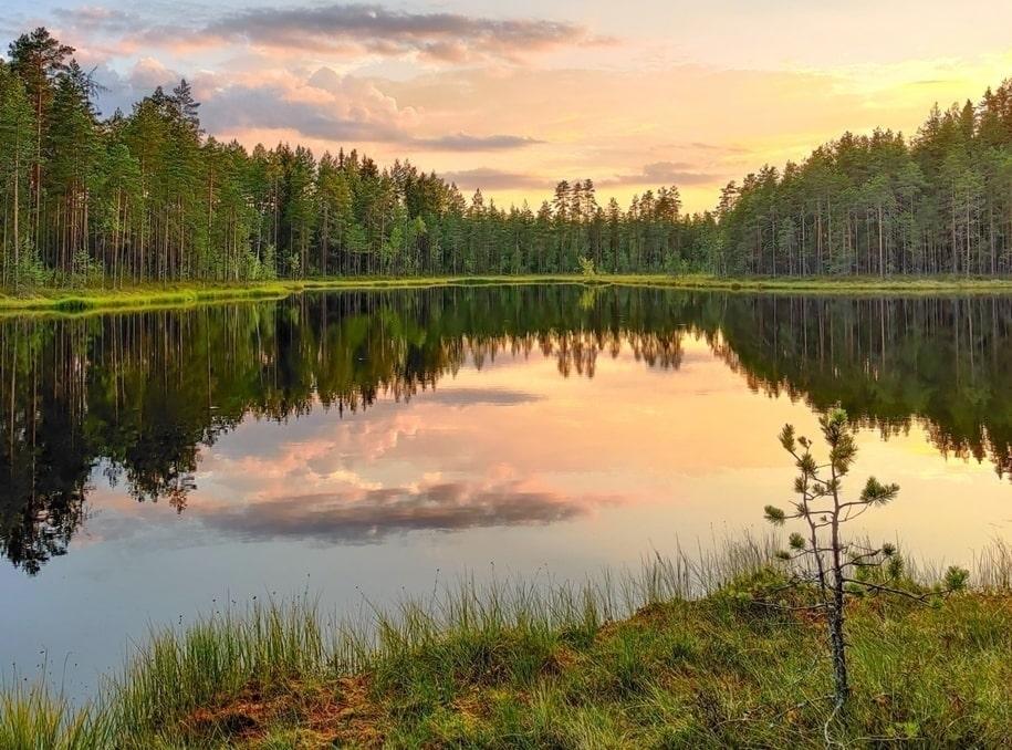 Прекрасная природа в фотографиях из разных уголков