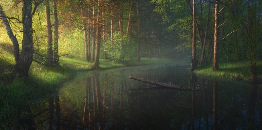 Восхитительные снимки природы из разных уголков планеты