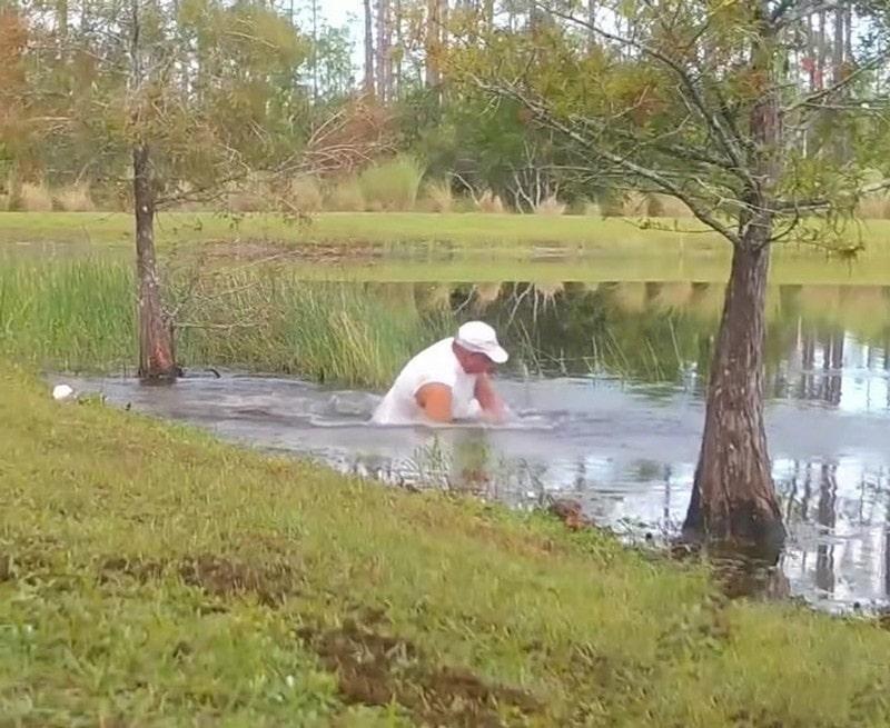 Человек спас собаку от аллигатора