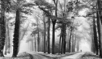 Самые популярные чёрно-белые фотографии на 500px этого года