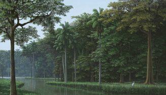 Джунгли и водопады: лучшие работы Томаса Санчеса